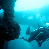 Key Largo Scuba Diving :